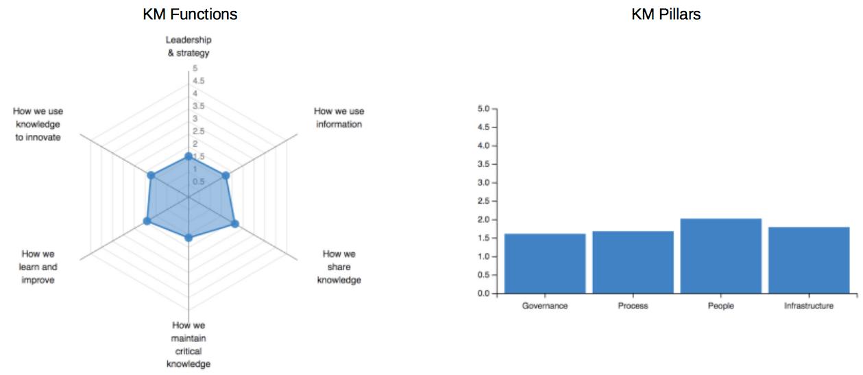 Exemplo de gráficos do Global Survey on KM Capabilities and Impact